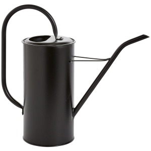 Fletch Watering Can