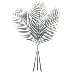 """40"""" Palm Leaf Bundle Green"""