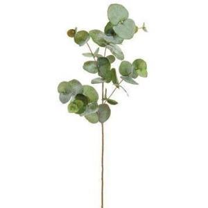 "34"" Eucalyptus Leaf Spray  Green Gray"