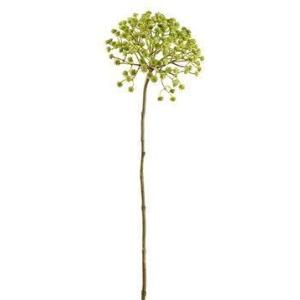 "29"" Everlasting Flower Spray  Two Tone Green"