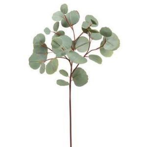 """26"""" Eucalyptus Spray  Green"""