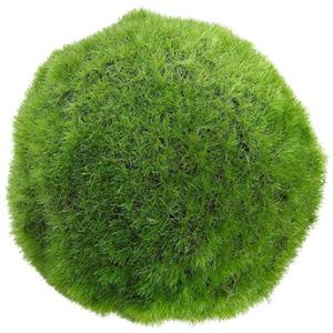 """7"""" Moss Ball"""
