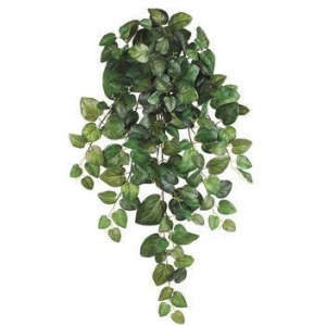 "32"" Round Swedish Ivy Hanging Bush Green"