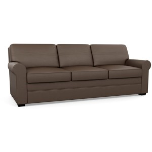 Gaines Queen Plus Sofa Sleeper