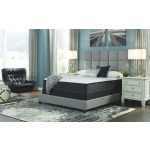 Anniversary Edition Plush Full Mattress
