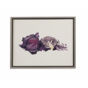 Watercolor Purple Cabbage
