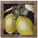 Dramatic Lemon