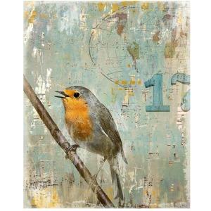 Aves 17