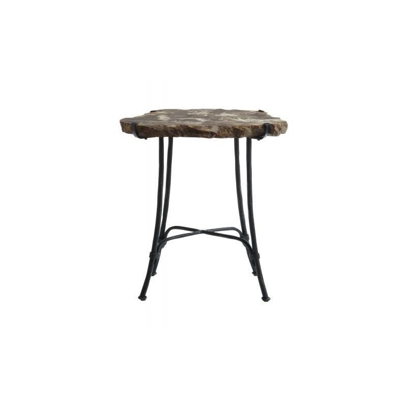 Miraculous Petrified Wood Slab Side Table Interior Design Ideas Clesiryabchikinfo