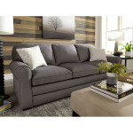 Nicodemus Stationary Sofa with 2 Pillows