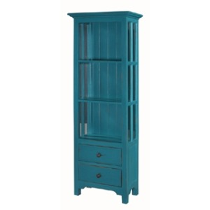 Aries Bookcase W/ Out Door