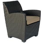 Arm Chair w/ Cushions