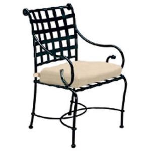 Arm Chair w/ Loose Cushion