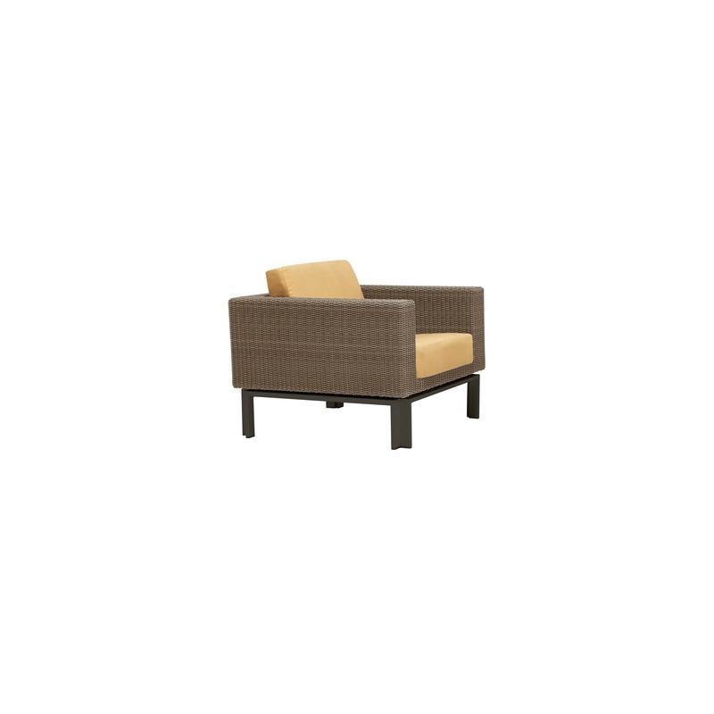 Lounge Chair w/ Loose Cushions