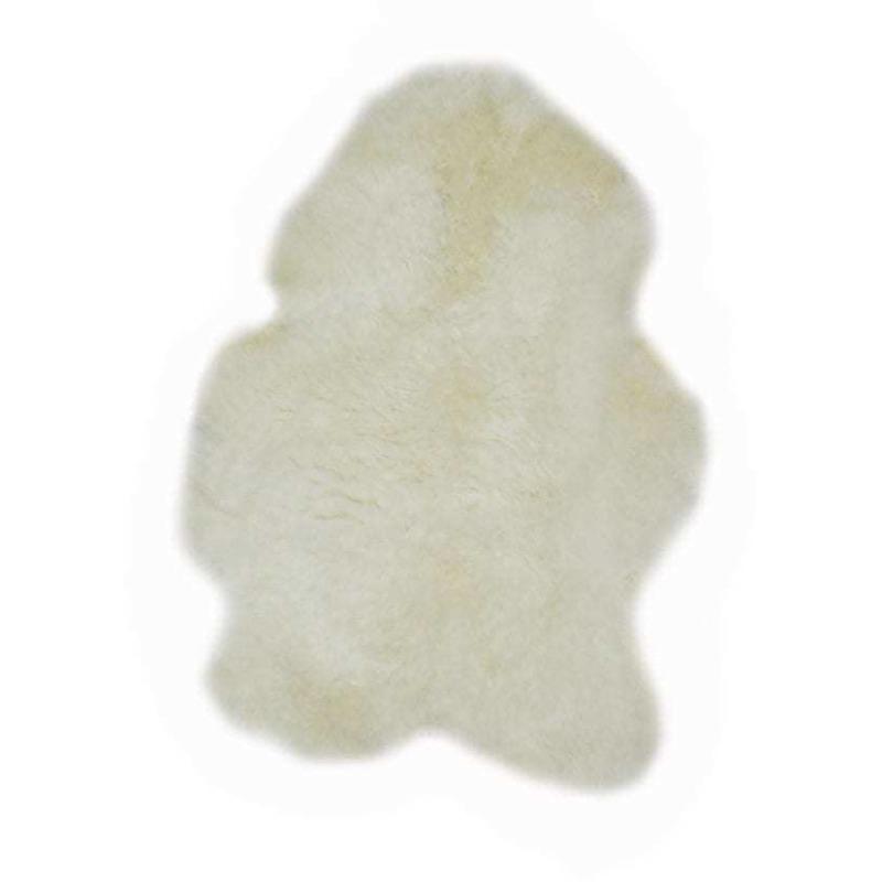 single-icelandic-sheep-1-600x828.jpg