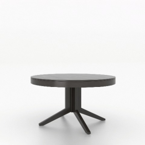 Contemporary Wood Top Table