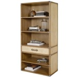 Archive Home and Monarch Vellum Trunk Bookcase