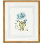 30-0043a Bl Floral W/ribbon-a
