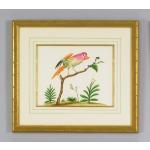 32-0008a Multicolor Bird