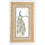 35-0064a Peacock - I
