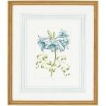 30-0043c Bl Floral W/ribbon-c