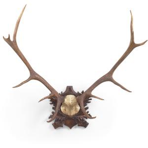 53-0018 Lg Deer Antlers