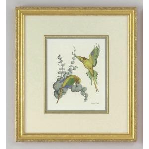 30-0029a Yellow Parakeets - A