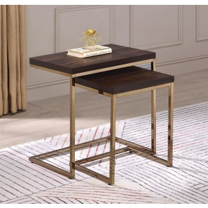 2pcs Nesting Table