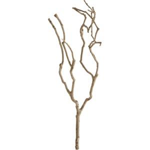 Tea Tree Branch Decoration