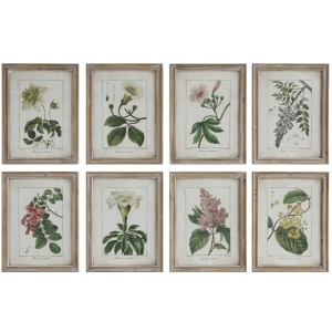 Wood Framed Wall Decor w/ Vintage Floral Image - 8 Styles