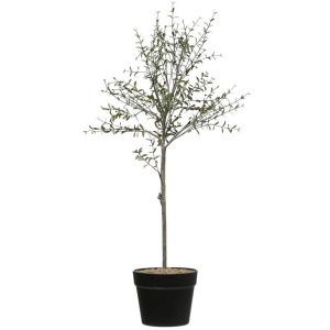 """29""""H Faux Thyme Topiary in Pot"""