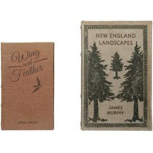 """MDF & Canvas Book Storage Boxes, Set of 2 """"New England Landscapes"""""""