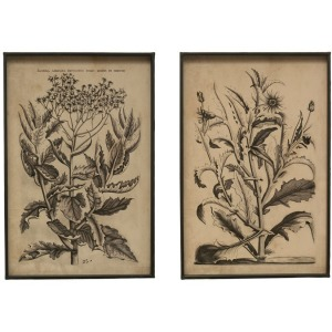 Metal Framed Wall Decor w/ Floral Image, 2 Styles