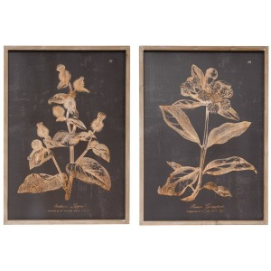 Wall Decor with Botanical Print, Charcoal Color - 2 Styles
