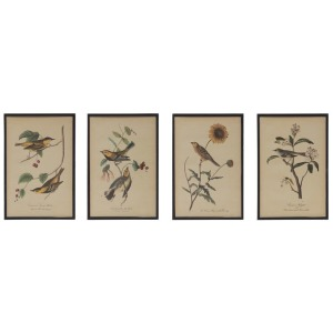 Wood Framed Wall Decor w/ Vintage Reproduction Bird & Flower Image, 4 Styles
