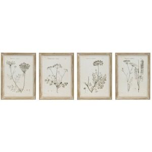 Wood Framed Wall Decor w/ Vintage Reproduction Botanical Print - 4 Styles