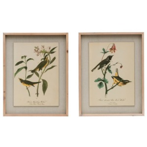 Wood Framed Wall Decor w/Vintage Reproduction Birds, 2 Styles