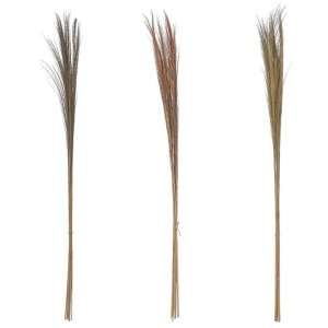 Dried Natural Feather Grass Bunch - 3 Colors