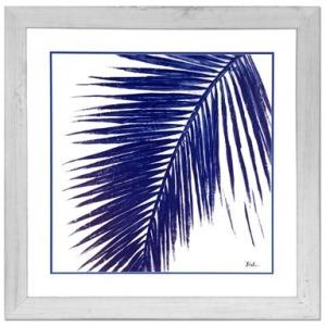 Indigo Palm 1