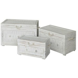 Seaside White Shell Set Of 3 Trunks