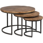 Shelby Coffee Table - Set of 3