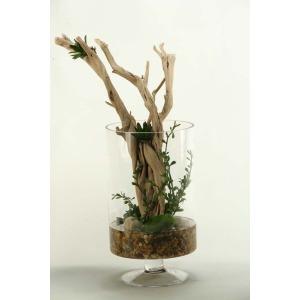 Ghostwood branches in glass pedestal cylinder vase