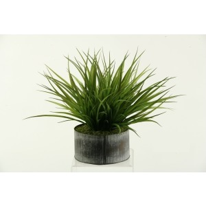 Wild Grass in Round Tin Planter