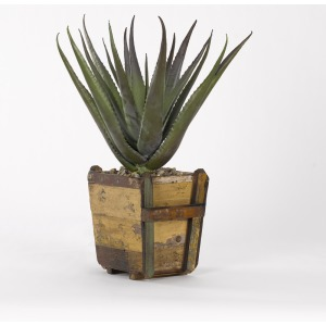"26"" Aloe Plant in Square Wooden Planter"