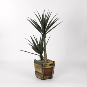 "60"" Succulent in Square Wooden Planter"