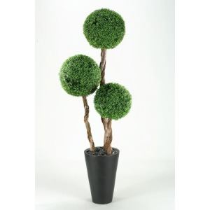 7\' BOXWOOD TOPIARY IN TALL ROUND RESIN PLANTER