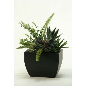 Aloe, Eecheveria, & Succulents in Metal Planter