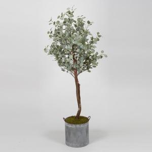 6.5' Eucalyptus Tree in Round Tin Planter