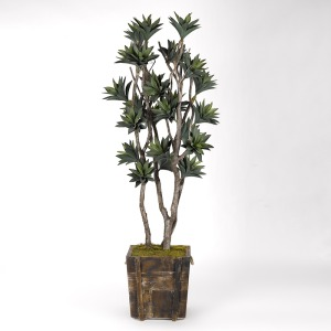 7' Green Agave Tree in Square Wooden Planter w/Rope Handles