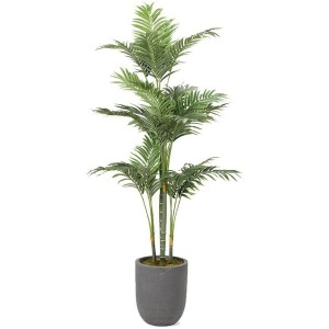Golden Palm Tree in Round Grey Planter
